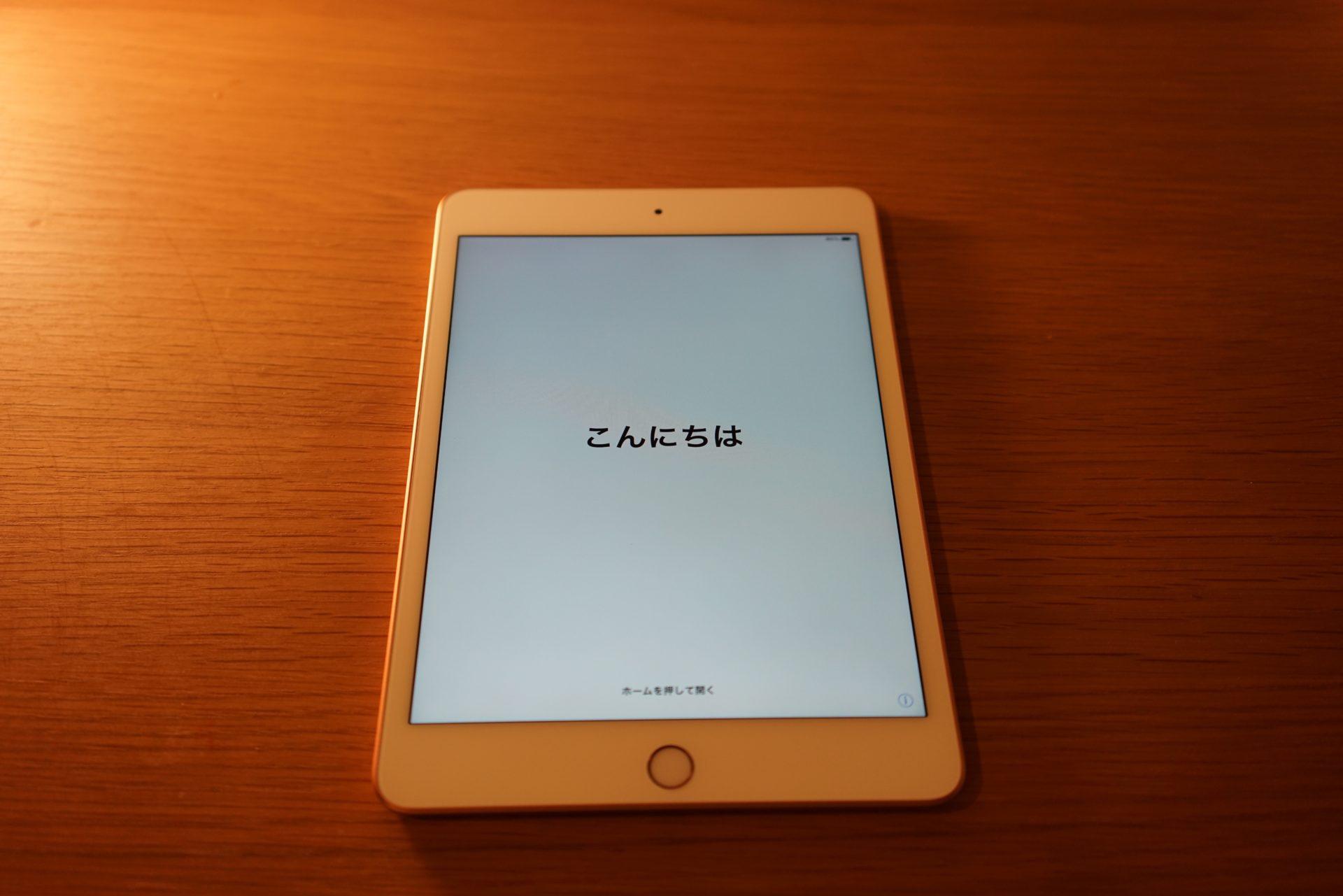 iPad mini 5 generation